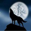天狼直播安卓版v1.1